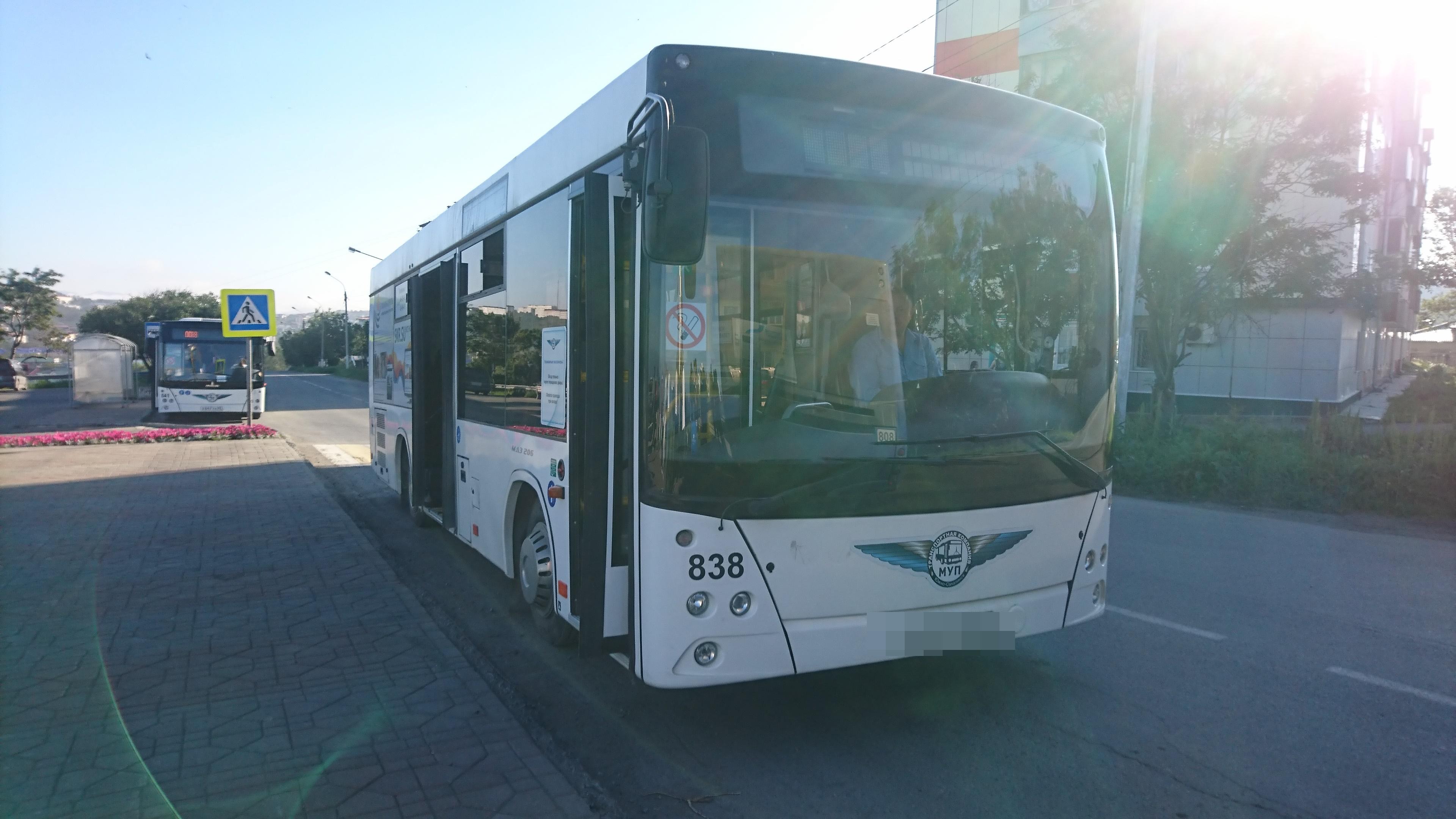ダイヤモンドプリンセスで寄港したコルサコフの観光用のバス