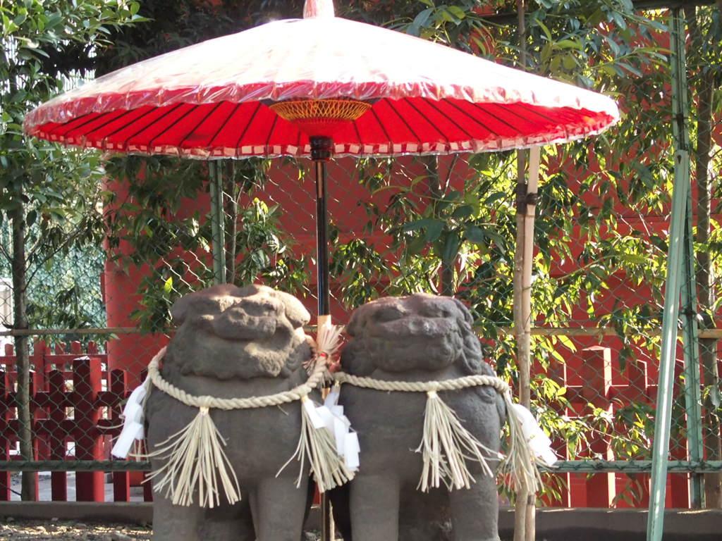 縁結びで有名な浅草神社の夫婦狛犬