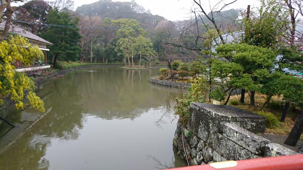 鶴岡八幡宮の源平池の平家池です