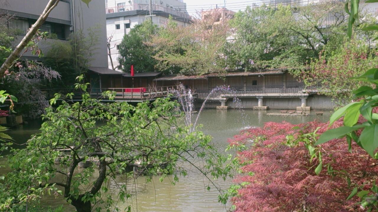 生田神社の境内にある生田の池