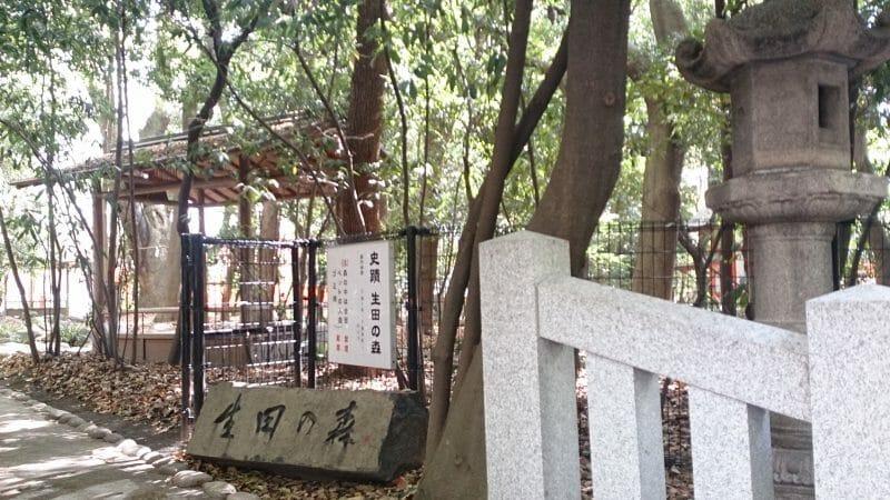神戸三宮の生田神社のパワースポット生田の森