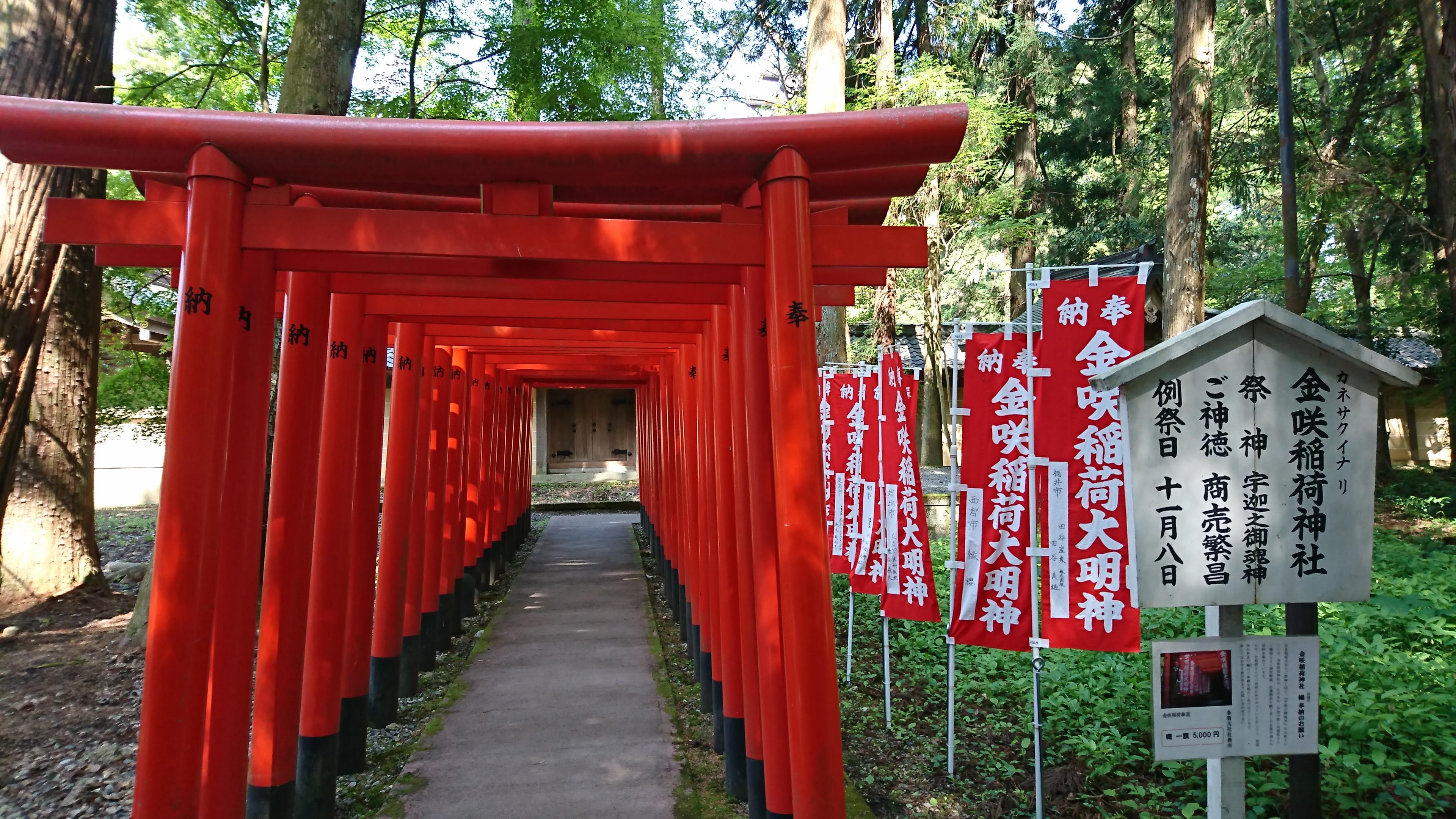 多賀大社の境内にある商売繁昌のパワースポット金咲稲荷神社