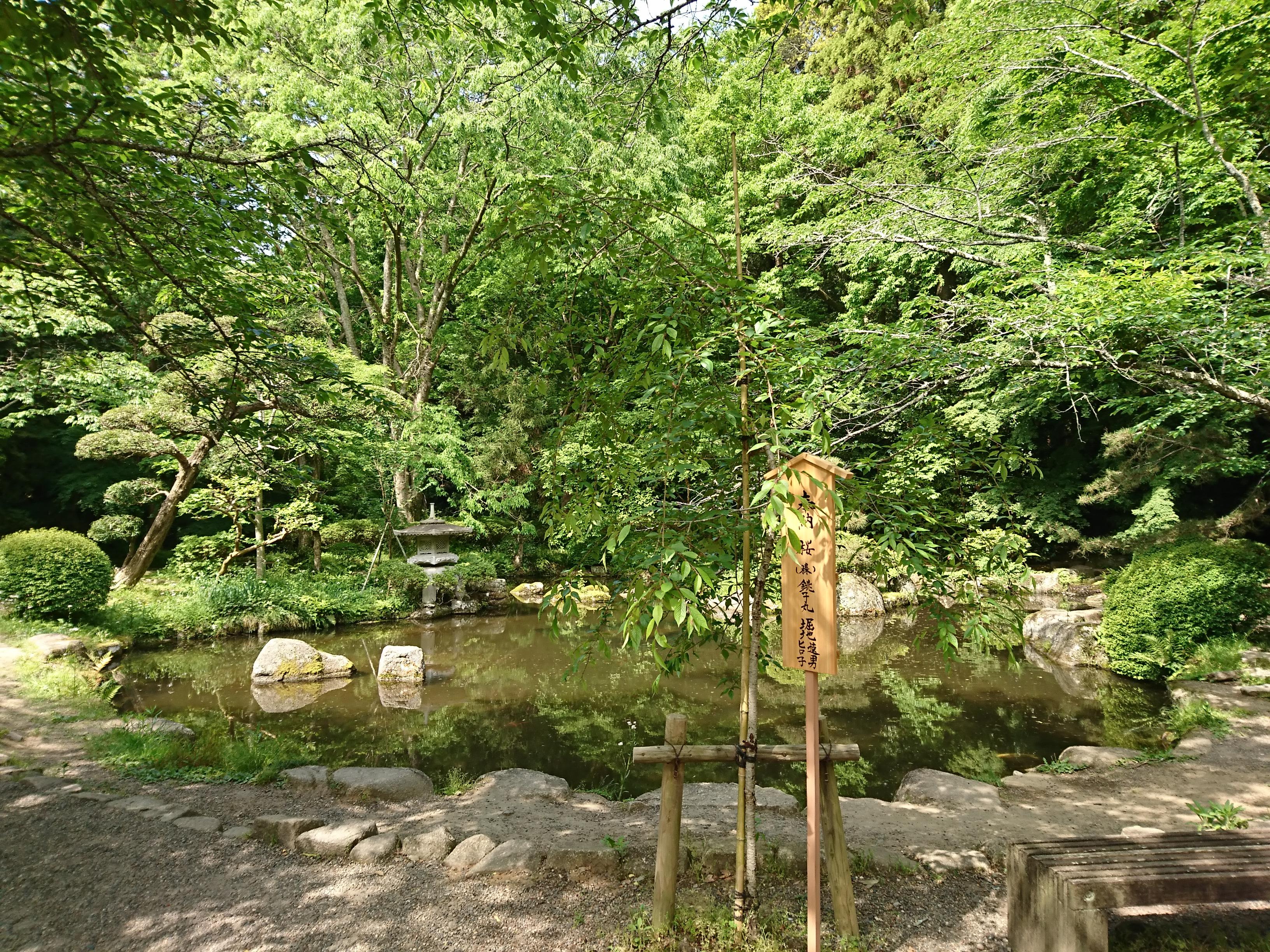 香取神宮の神池