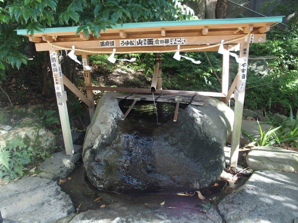 熱海来宮神社のお神水