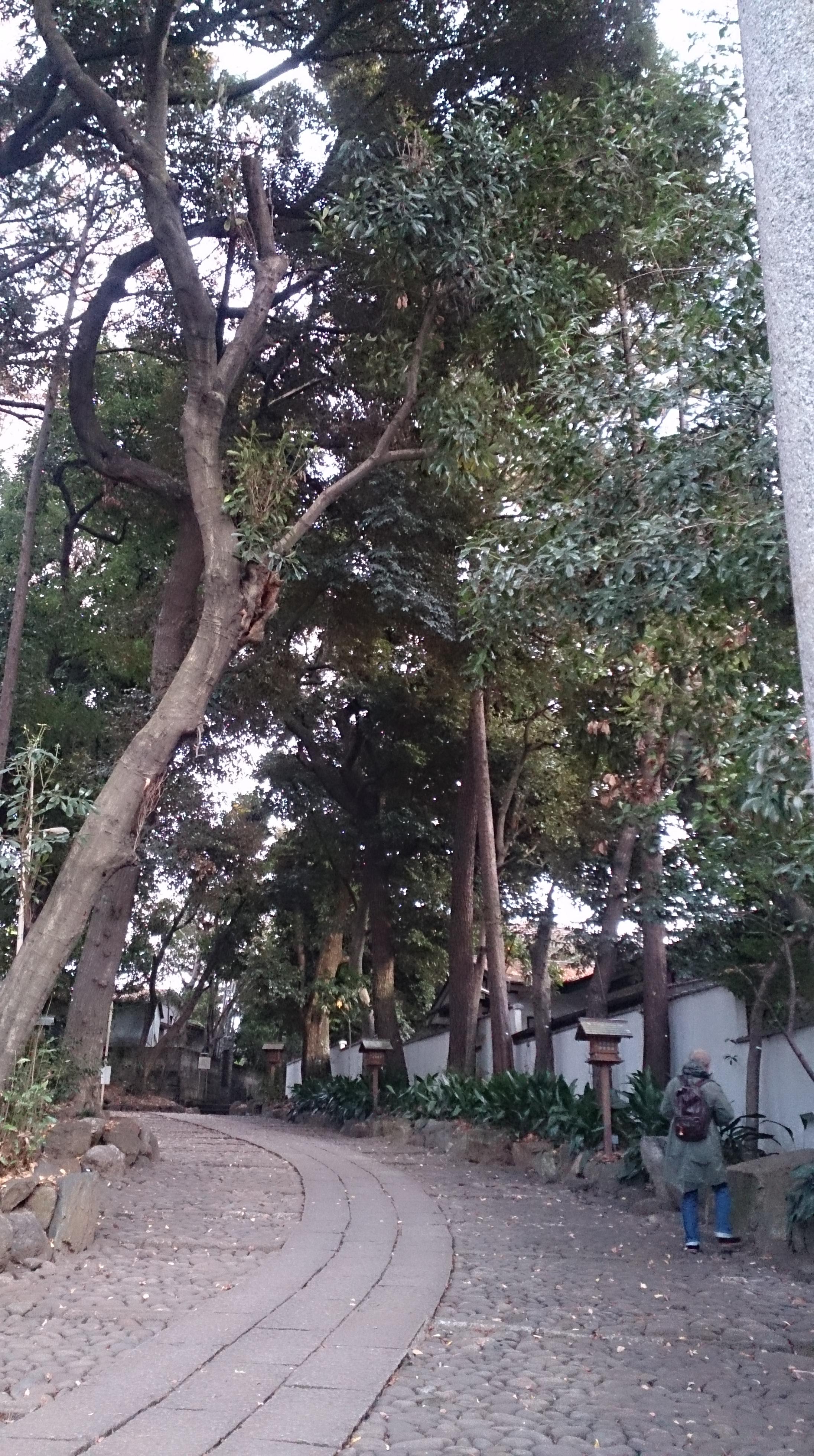 代々木八幡宮の境内