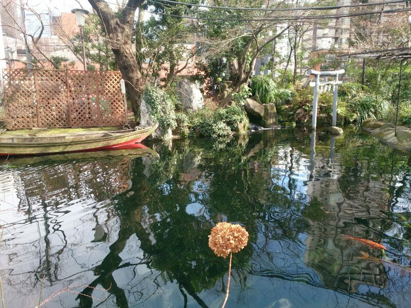 東京港区愛宕神社にある児盤水の池