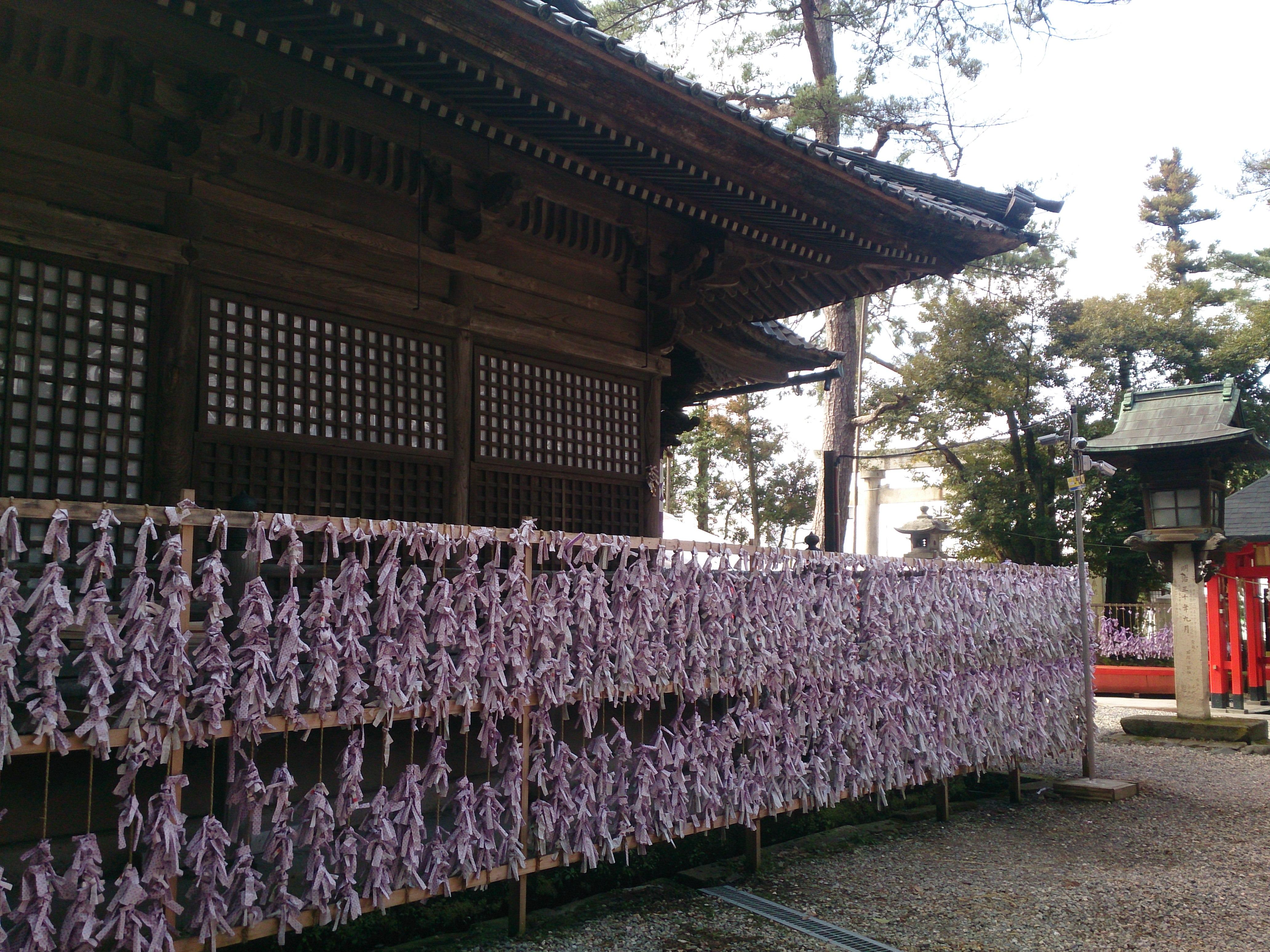 金沢の石浦神社のおみくじ結び処