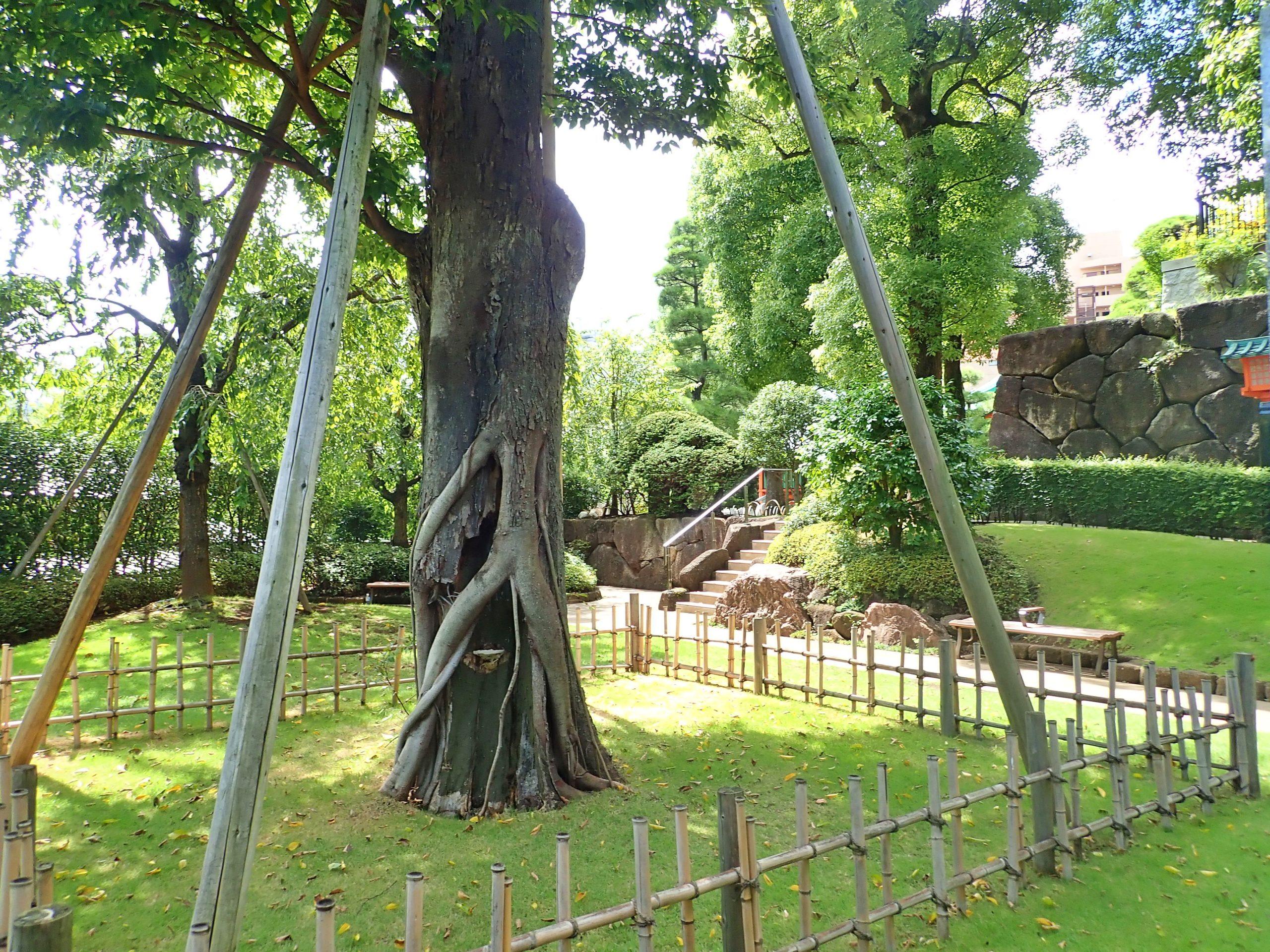 穴八幡宮の参道階段の脇にある公園