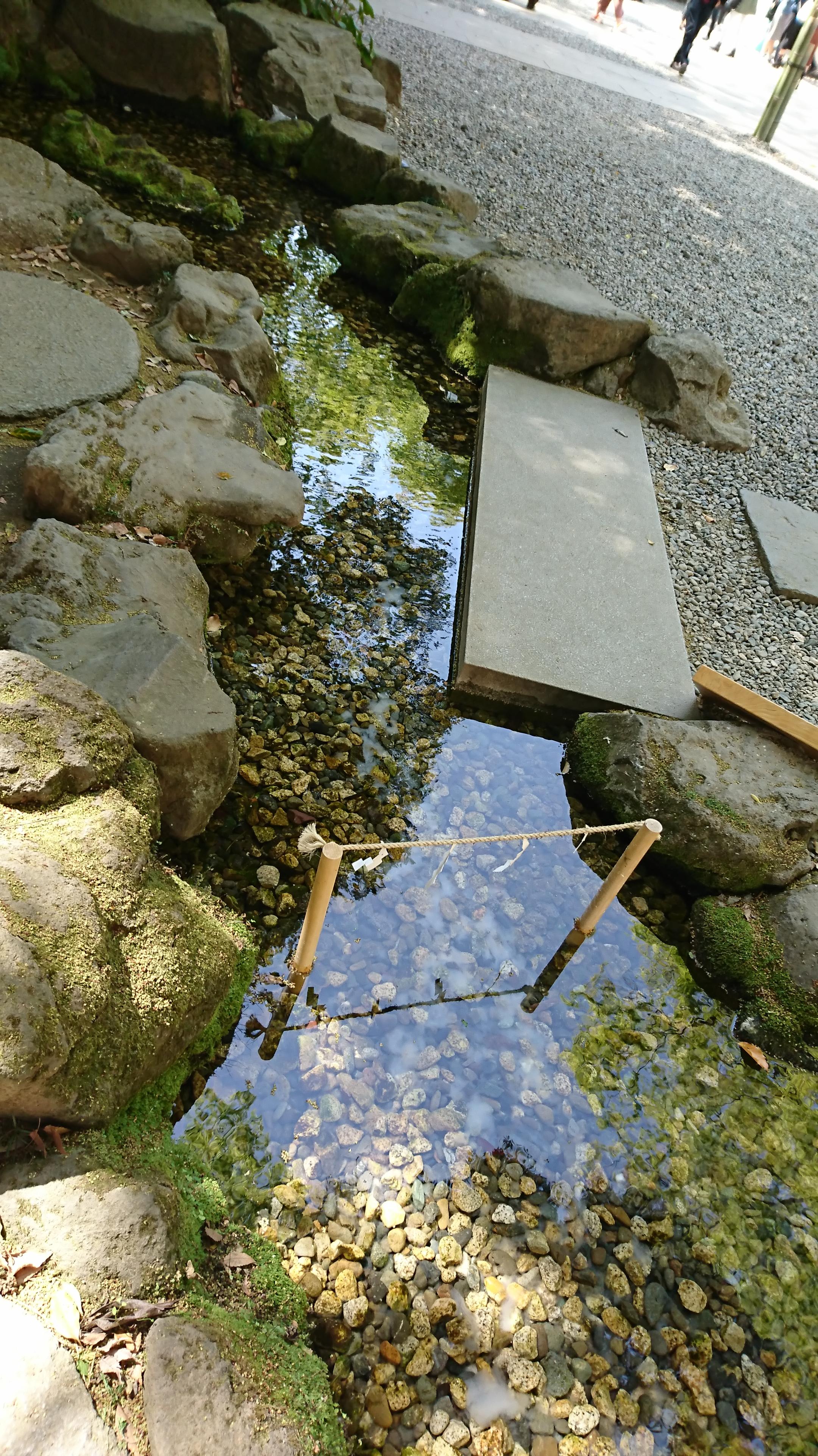 川越氷川神社の浄化の小川