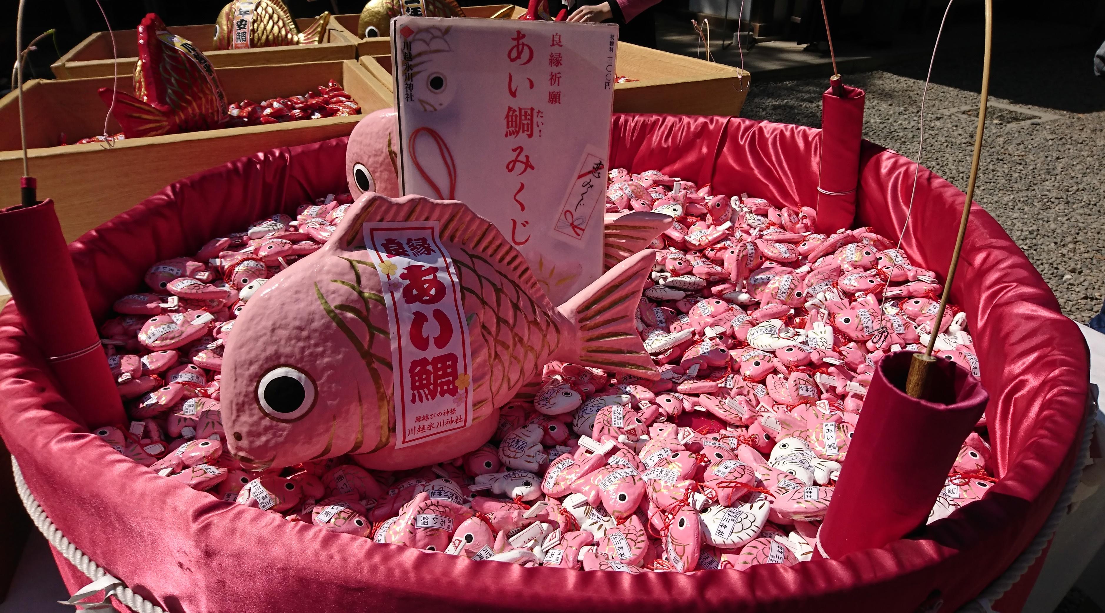 川越氷川神社のあい鯛みくじ