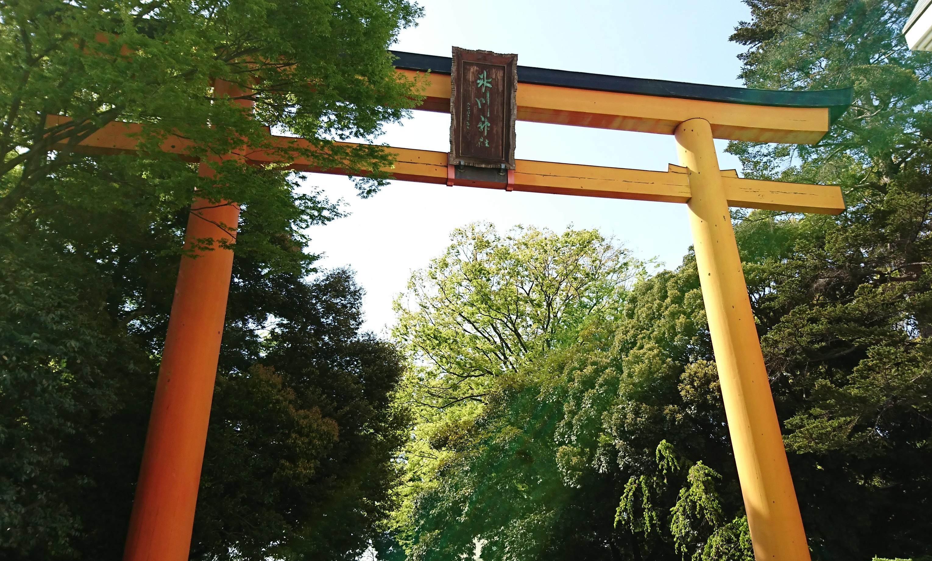 川越氷川神社の大鳥居