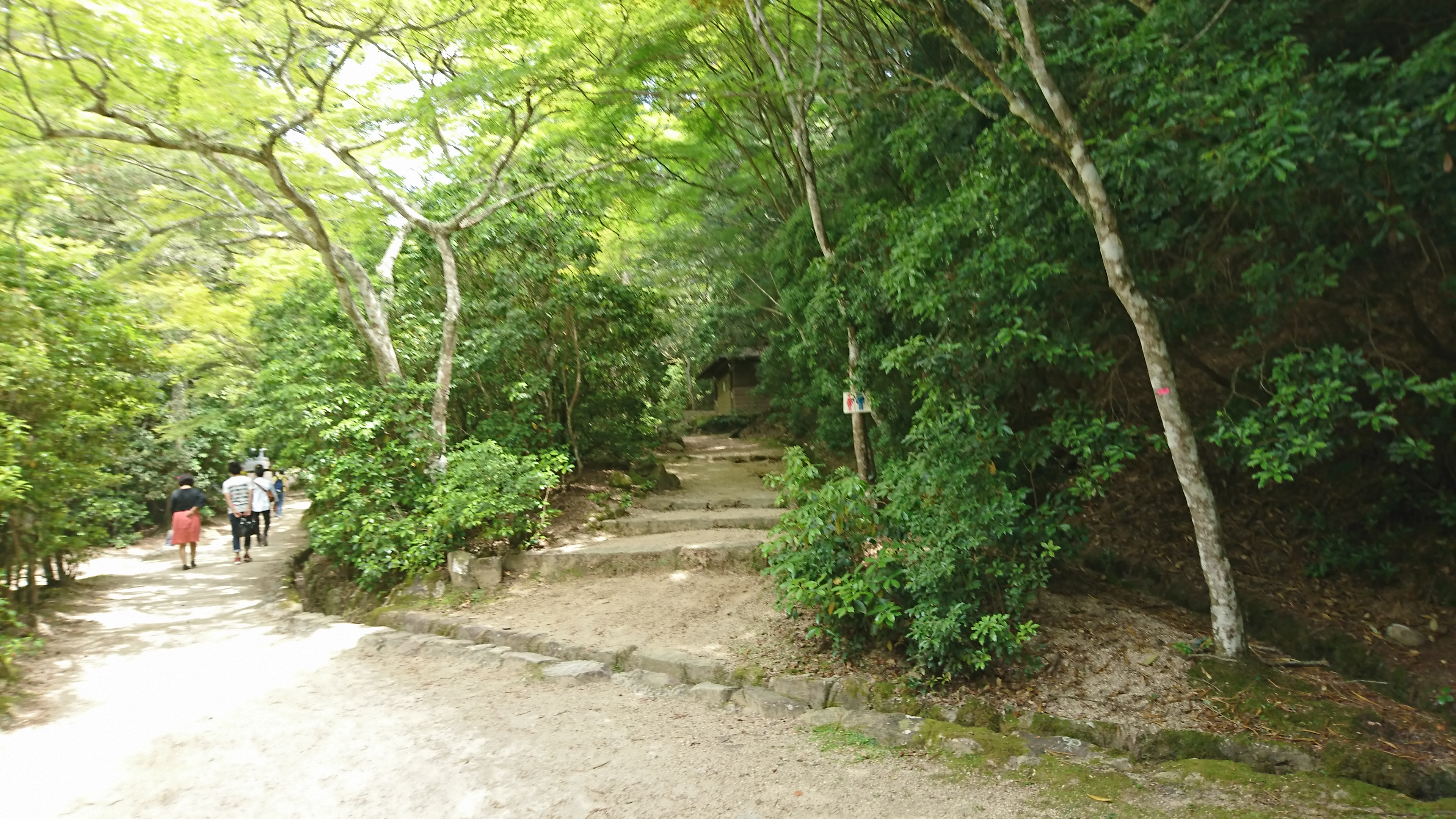 宮島ロープウェイ紅葉谷駅に向かう道のり