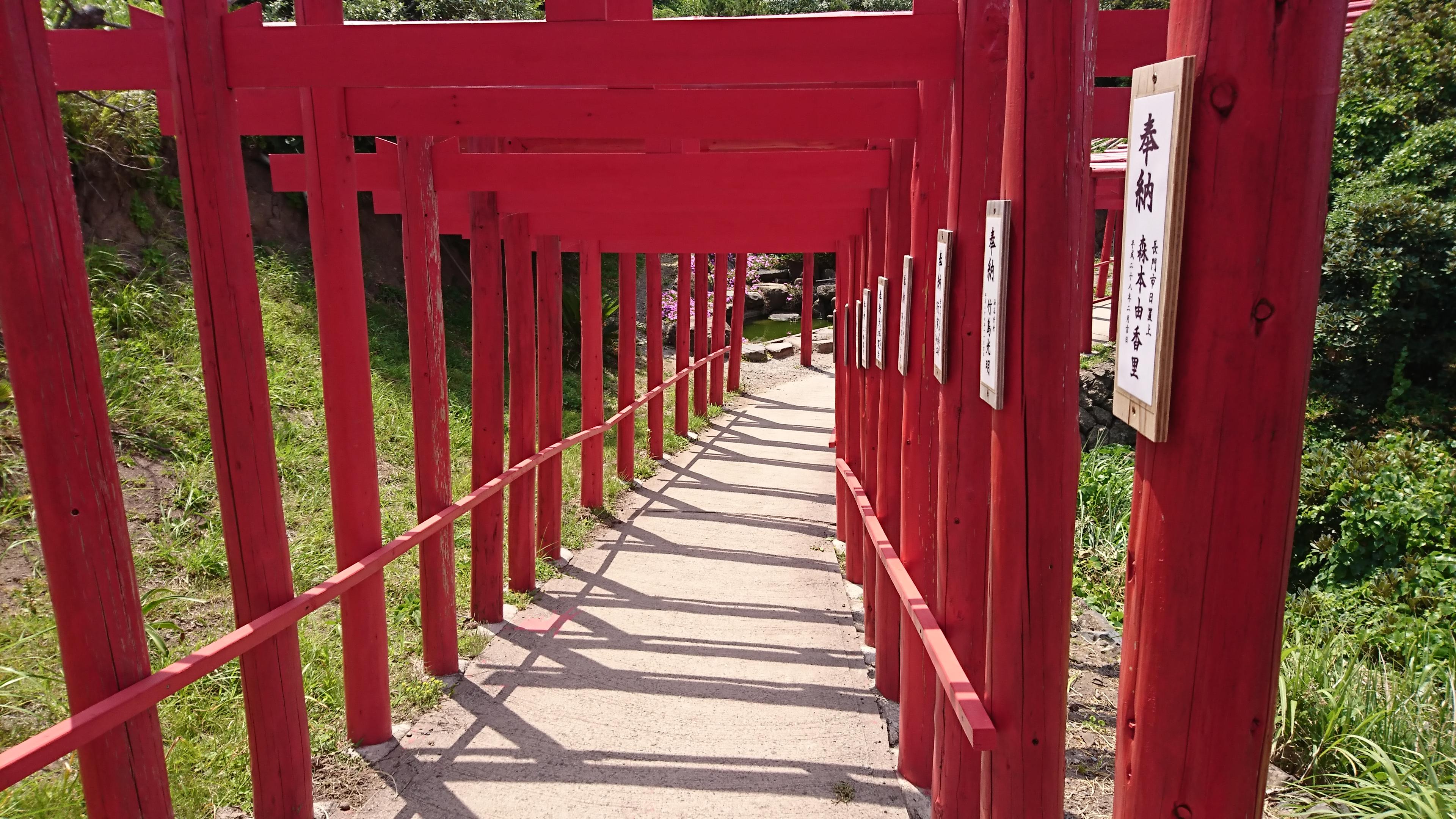 山口県の元乃隅稲成神社の参道