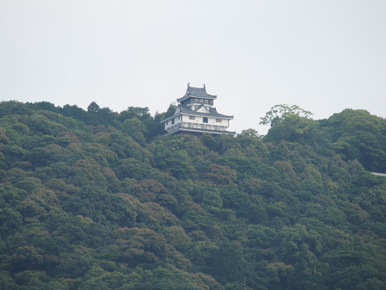 岩国の錦帯橋から見上げた岩国城