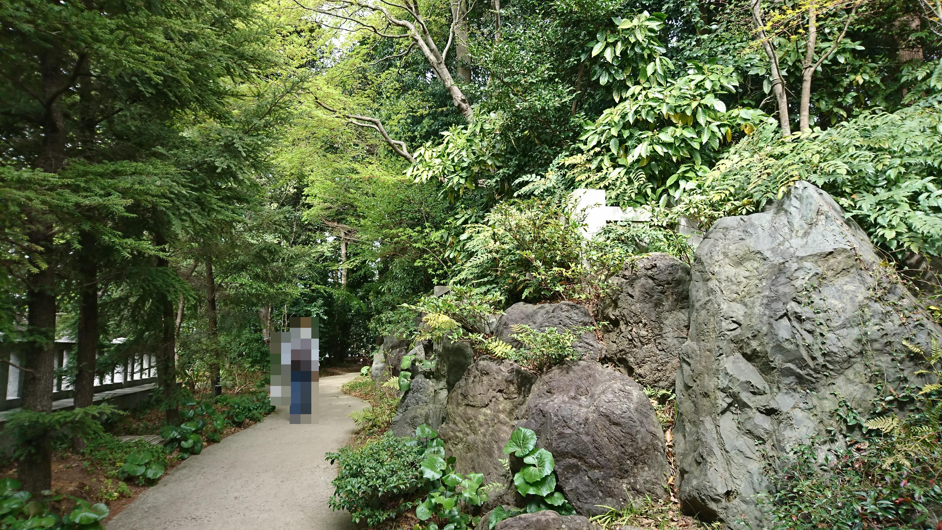 寒川神社の神嶽山神苑
