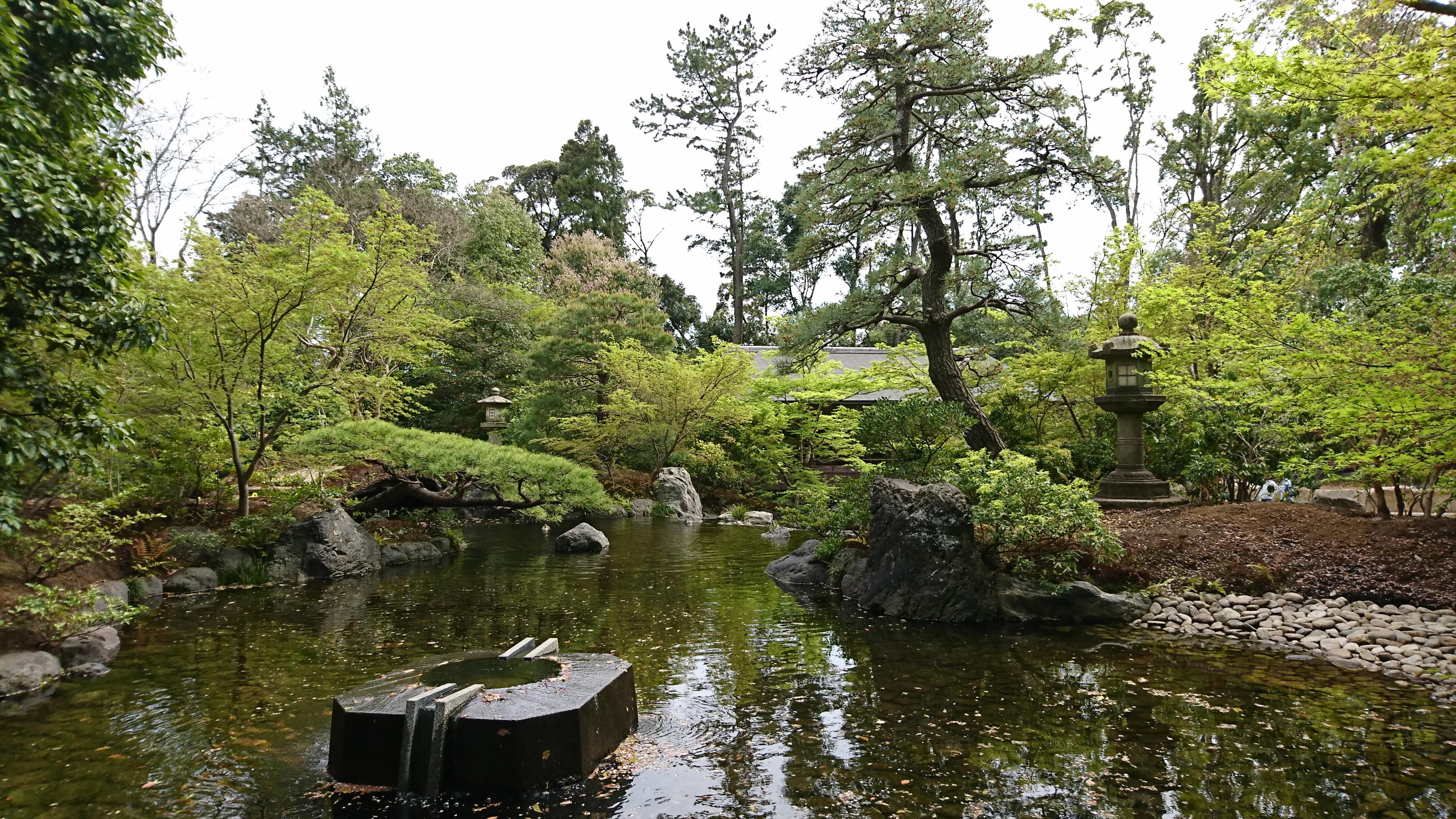 寒川神社の神嶽山神苑にある八氣の泉