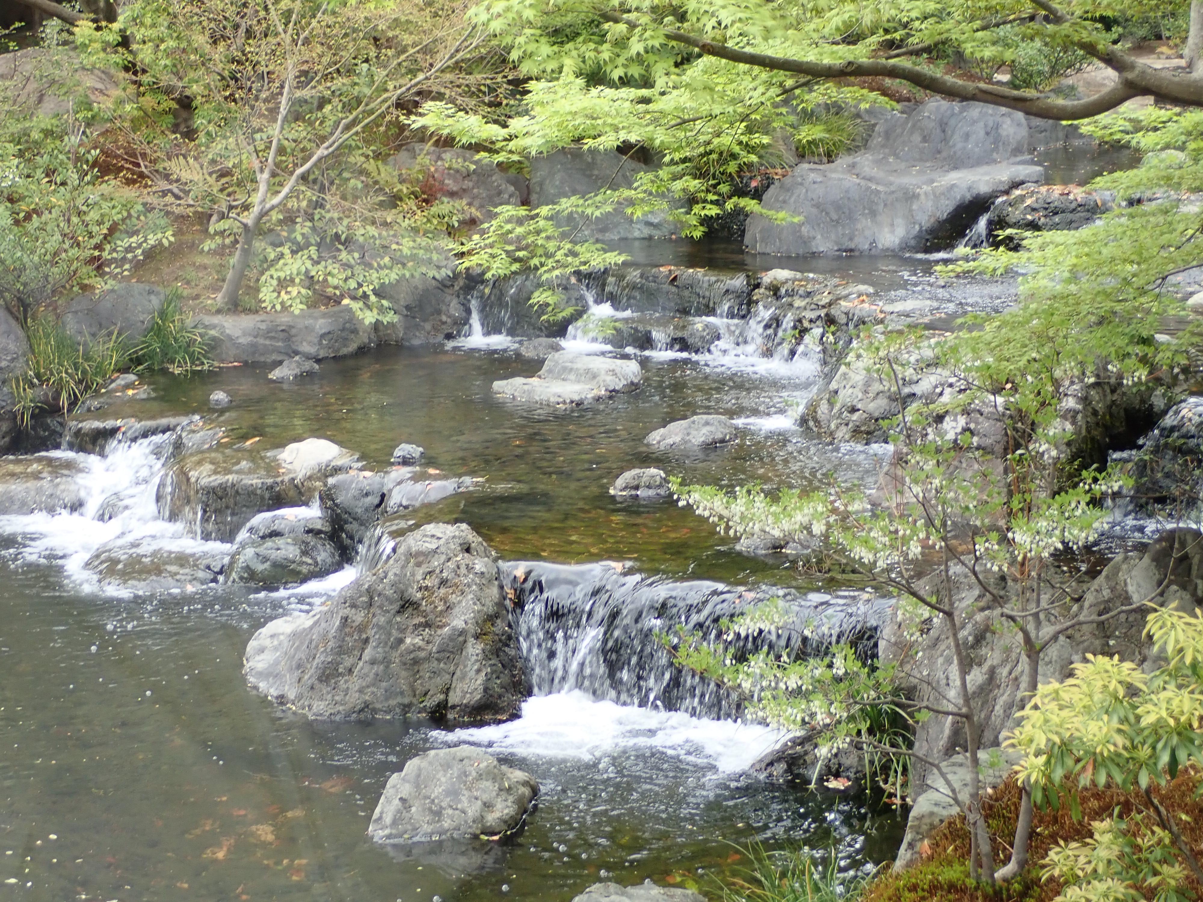 寒川神社の神嶽山神苑にある八氣の池