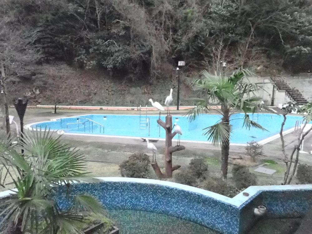 ポイントバケーション城崎温泉