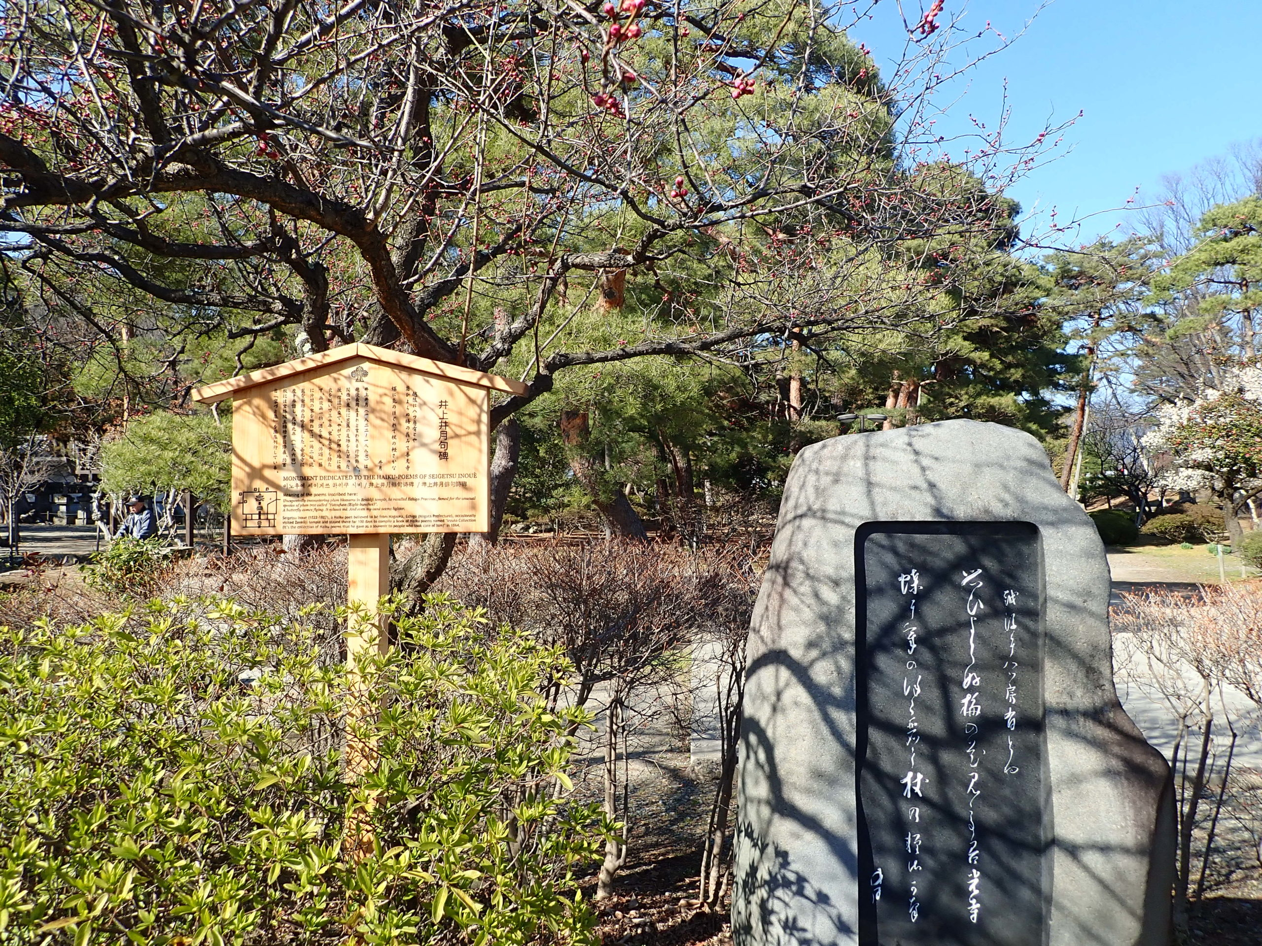 善光寺の境内にある井上伊月句碑