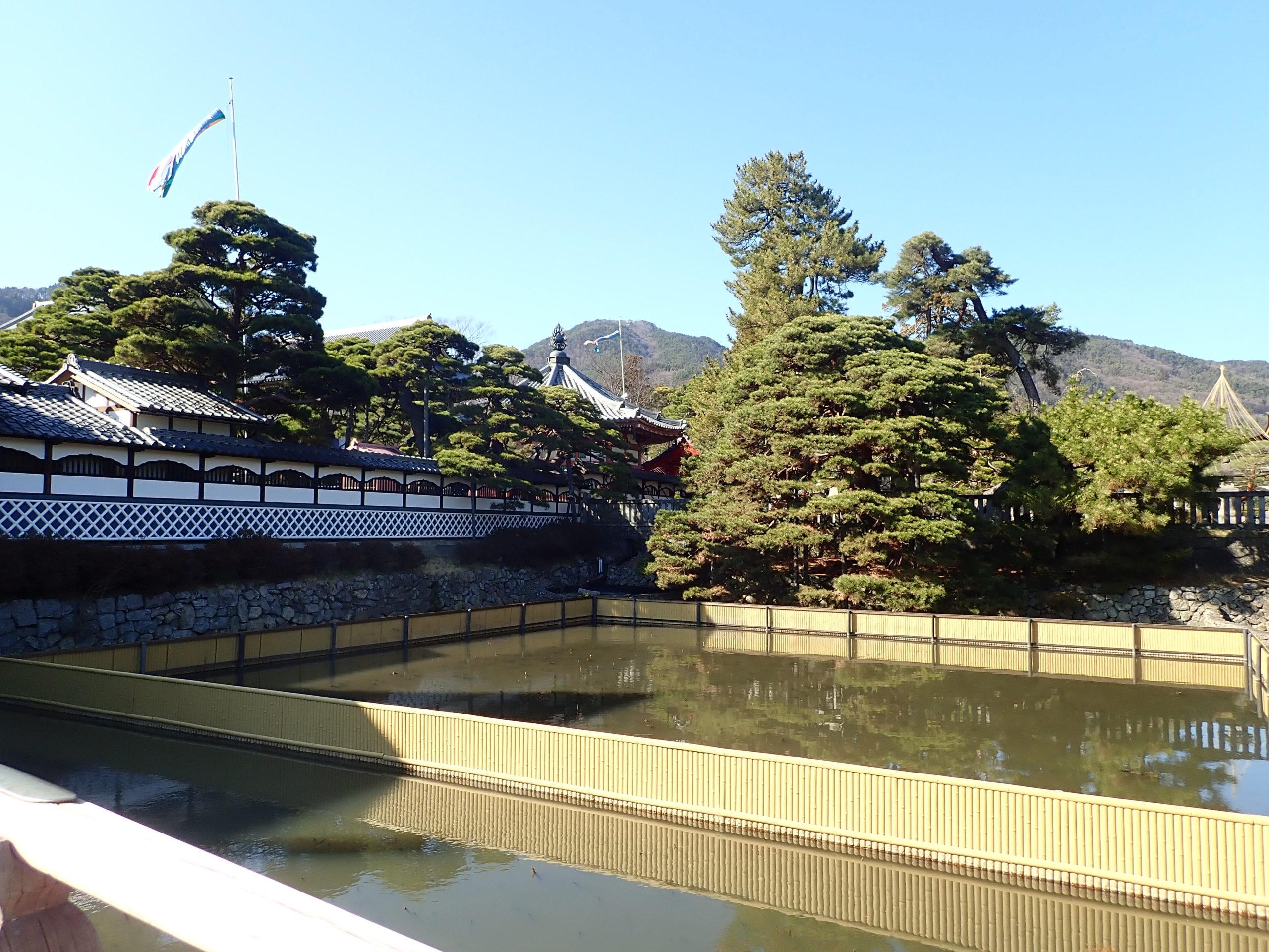信州善光寺の参道にある大勧進の放生池