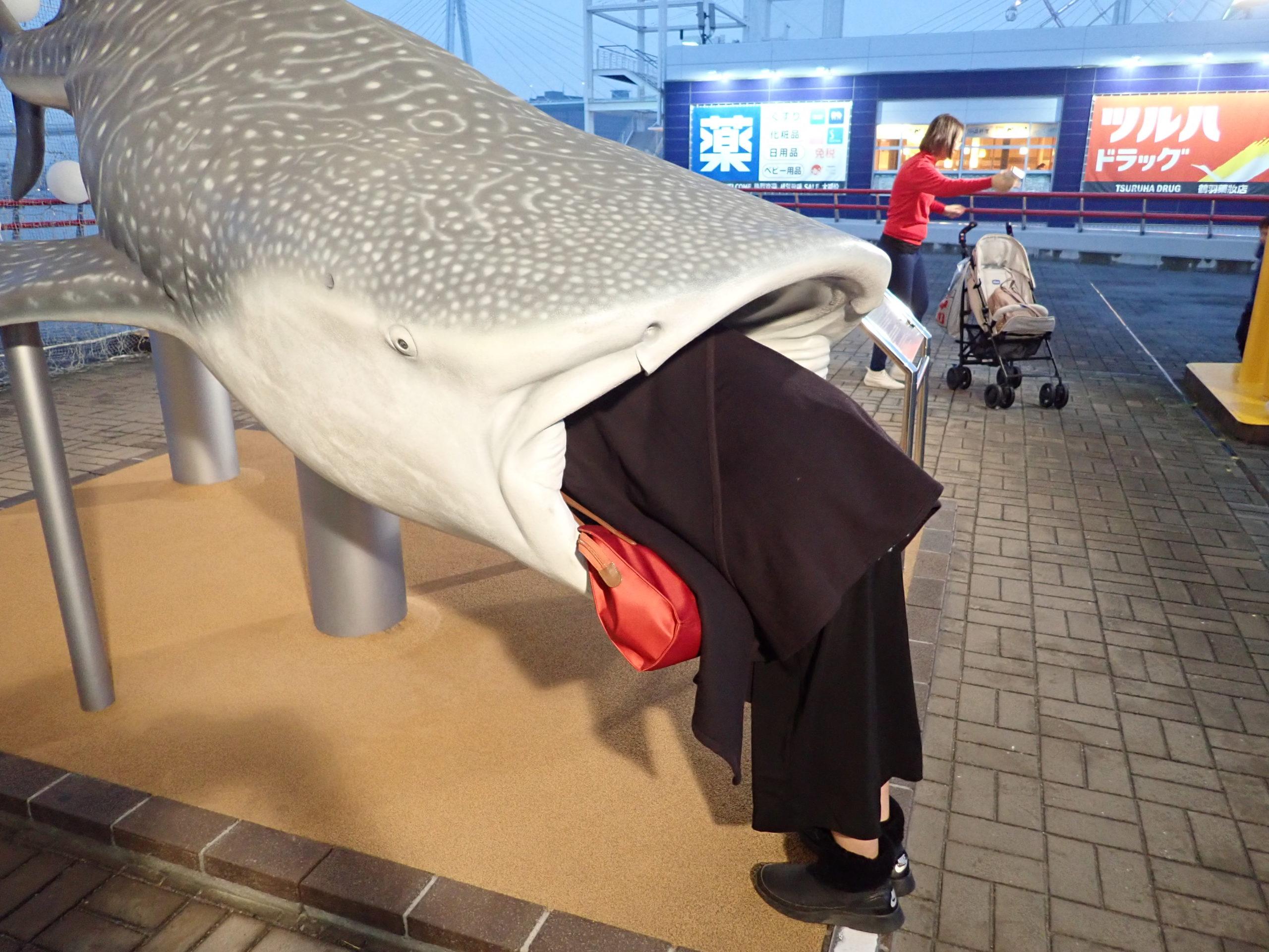海遊館にあるジンベエザメの模型