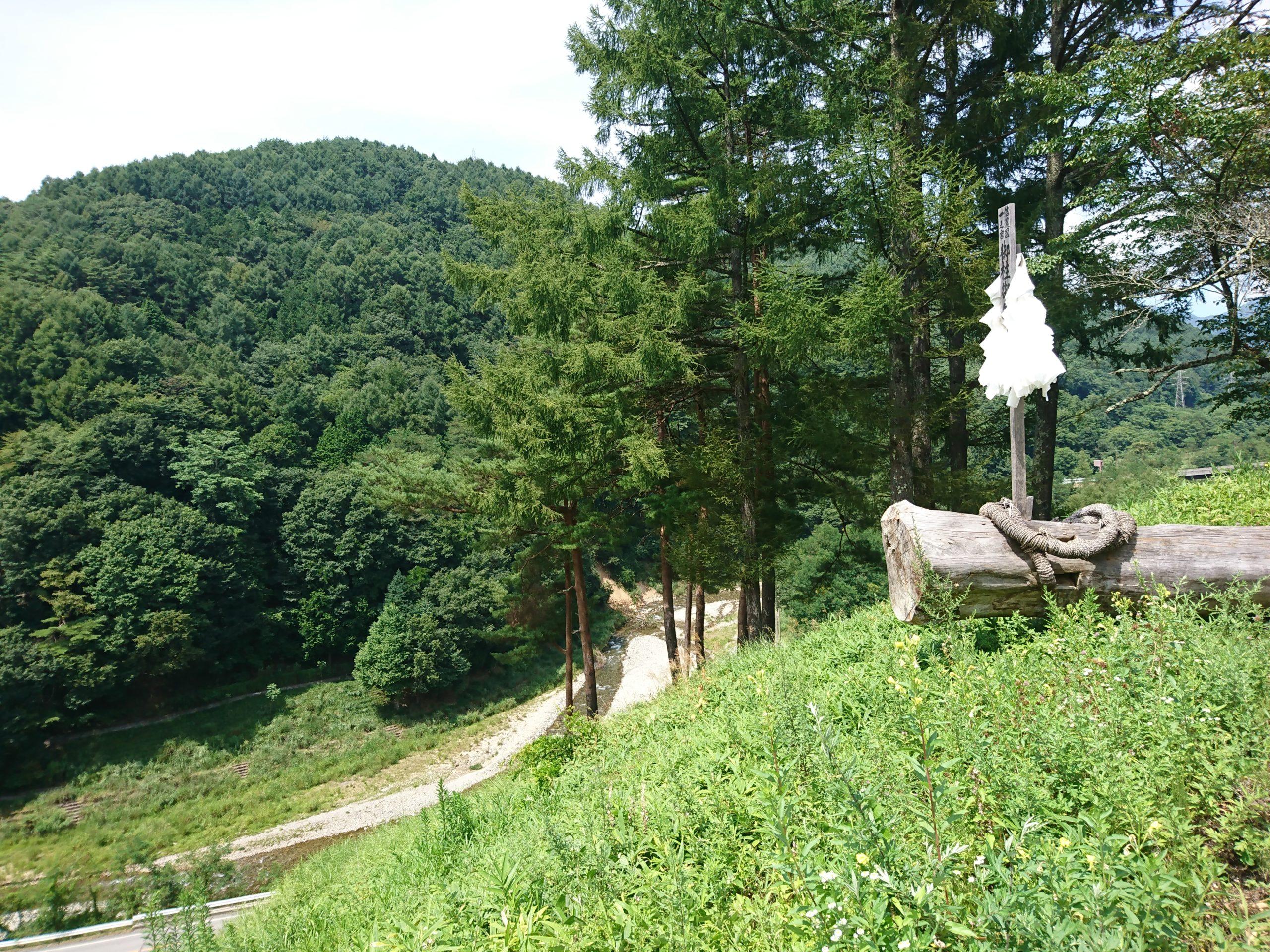 7年に一度行われる御柱祭の木落し坂