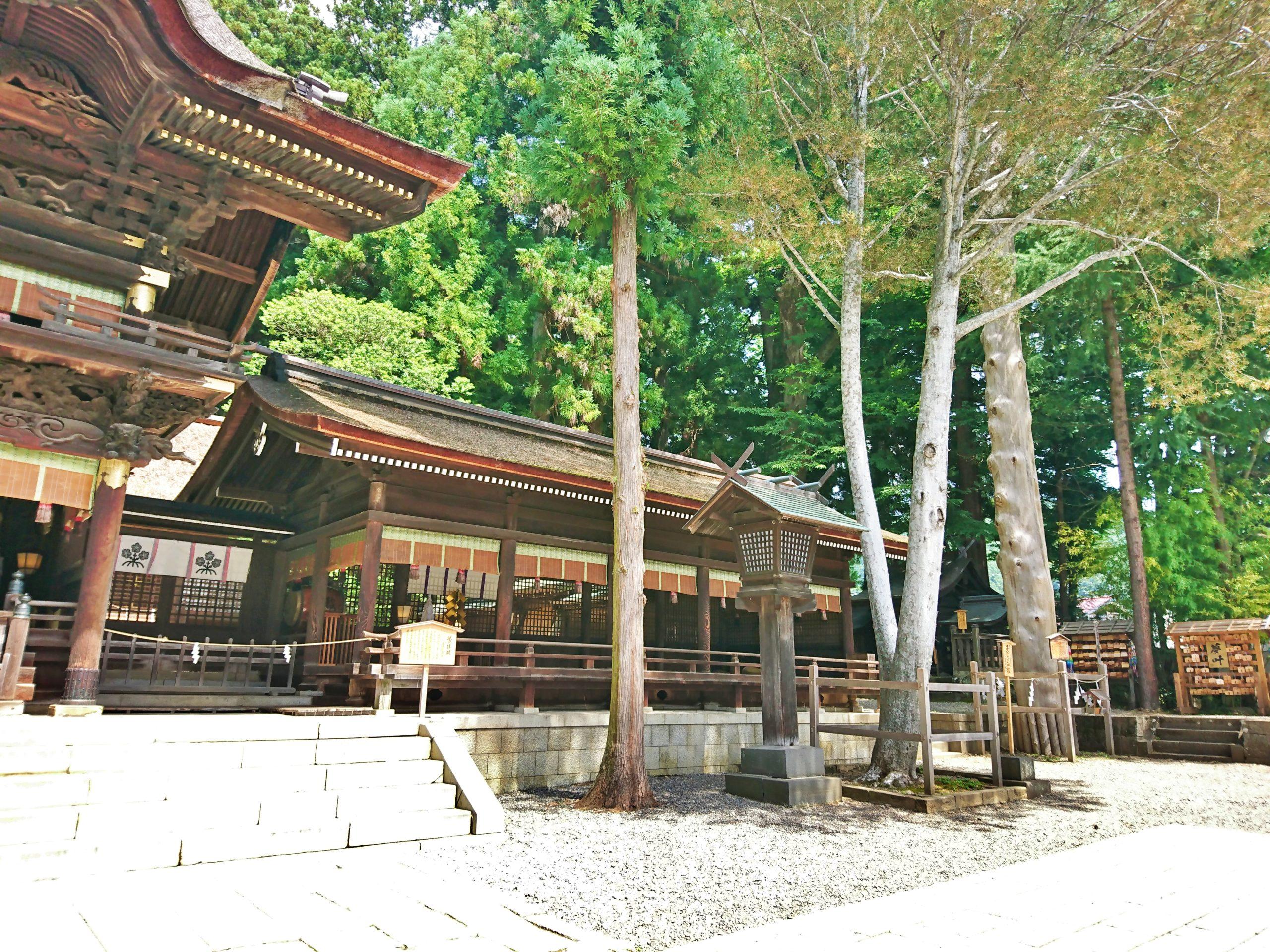 諏訪大社下社秋宮の天覧の白松と一之御柱