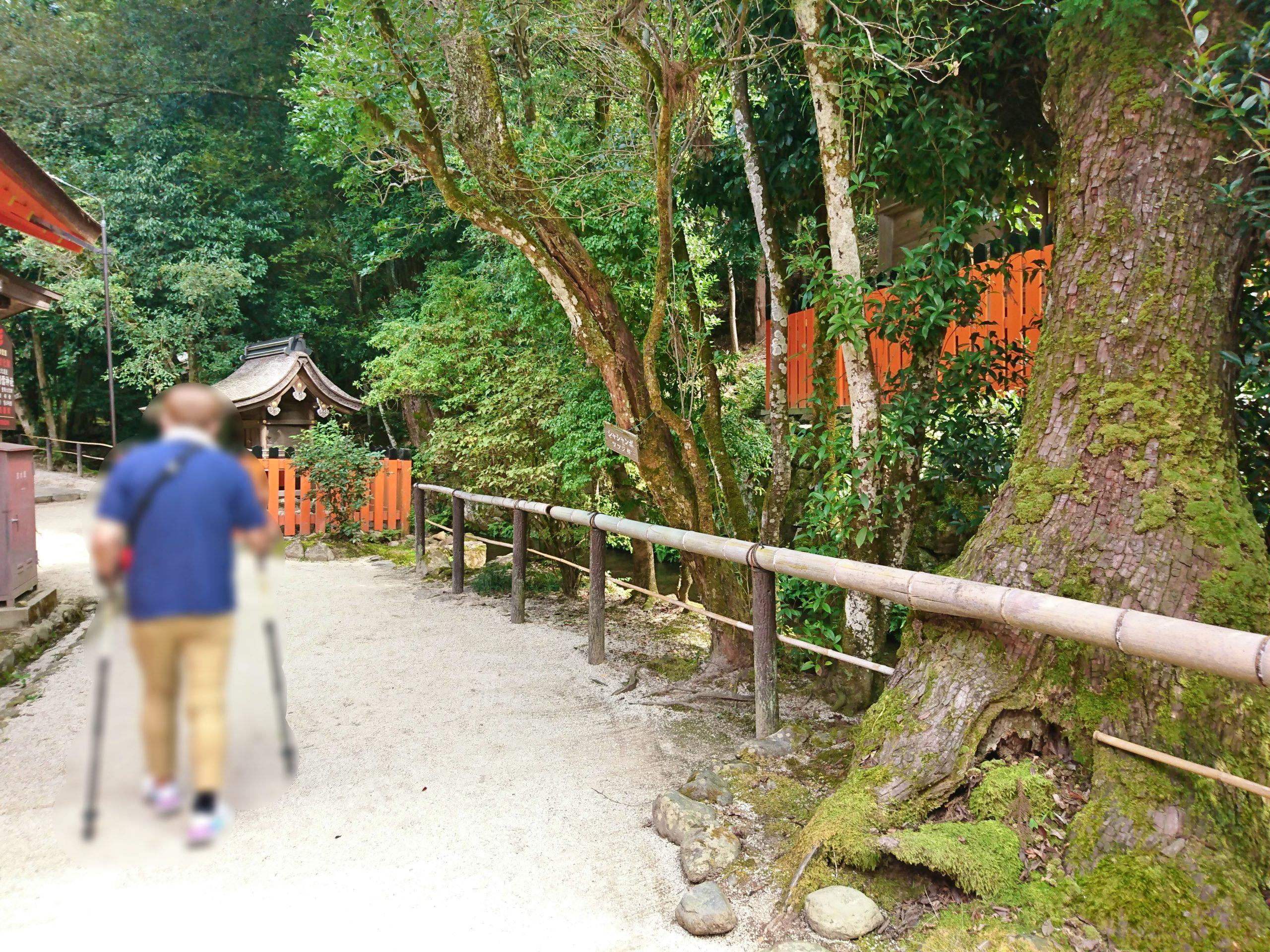 上賀茂神社の新宮神社に続く道