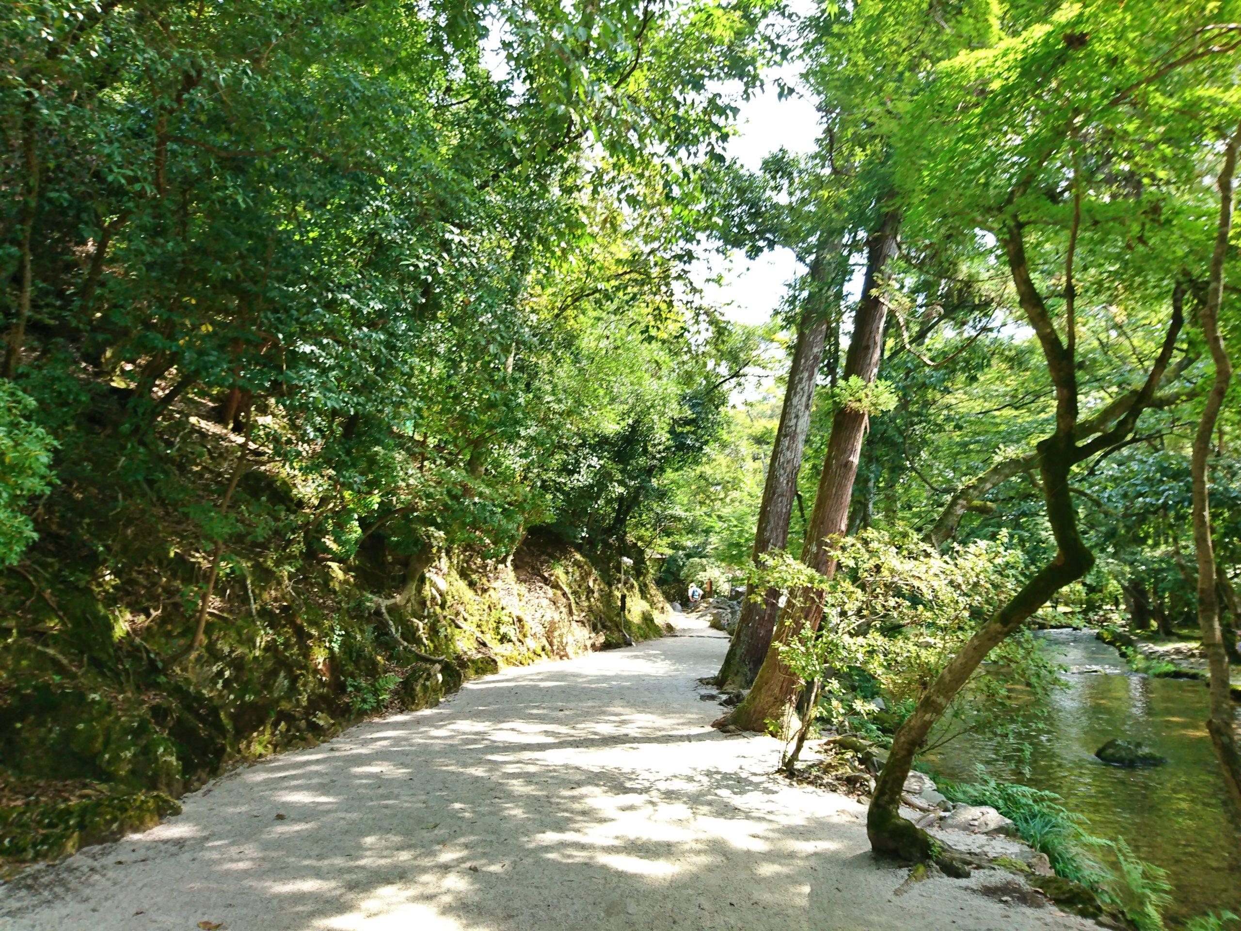 上賀茂神社を流れる小川